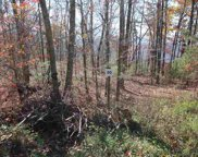 Lot 50 Mountain Ash Way, Sevierville image