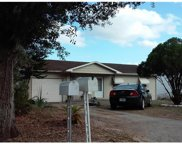 1135 Lakeview Drive, Clermont image