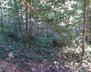 15884 Morningside  Drive, Guerneville image