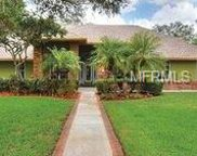 2881 Chelsea Place S, Clearwater image