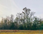 TBD Highway 905, Conway image