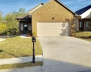 895 Maple Trc, Odenville image