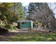 1330 WOODRUFF MOUNTAIN  RD, Roseburg image