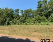Tract 7 Moser Ln, Whitehouse image