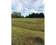 198  Pear Tree Road, Troutman image