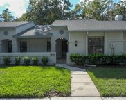 3478 Killdeer Place, Palm Harbor image