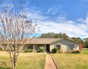 301 Retha Dr, Dripping Springs image