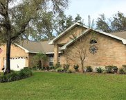 1604 Lady Bowers Trail, Lakeland image