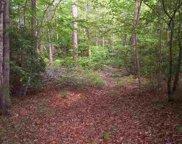354 Gauley Falls Road, Pickens image