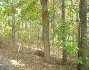 64 Long Cove/Keowee Falls Trail, Salem image