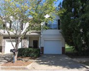 4952 Vireo, Flowery Branch image