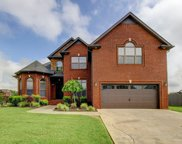 1517 Green Grove Way, Clarksville image