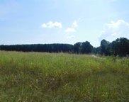 Grassy Pond Rd & Natures Trail, Gaffney image