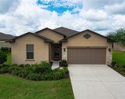 30244 Hackney Loop, Mount Dora image