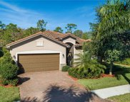 11241 Red Bluff LN, Fort Myers image