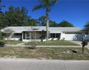 2513 Greenmoor Place, Tampa image