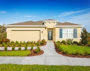 310 Winter Bliss Lane, Mount Dora image