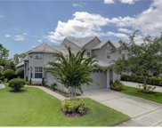 13670 Eagles Walk Drive, Clearwater image