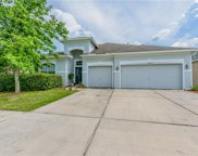 31218 Anniston Drive, Wesley Chapel image