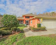 1631 Cortleigh Drive, New Port Richey image