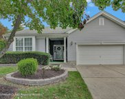 46 Tall Pines Drive, Neptune Township image