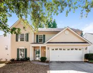 6510  Wild Orchid Court, Charlotte image