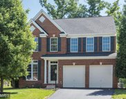 19258 COTON HOLDINGS COURT, Leesburg image