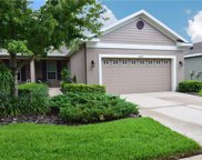 16022 Starling Crossing Drive, Lithia image