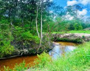 20 Ac Roy Fairley Rd, Lucedale image