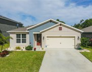 16475 Centipede Street, Clermont image
