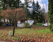 13211 424th Ave SE, North Bend image
