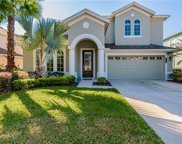 8104 Savannah Point Ct, Tampa image