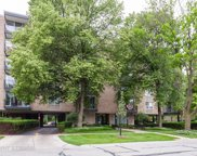 424 Park Avenue Unit 602, River Forest image
