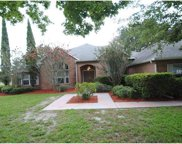 3051 Cat Tail Lane, Debary image