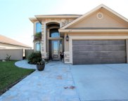 417 Windmill Palm, Laredo image