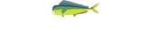 First Coast Real Estate & Property Management