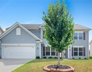 10302 Little Whiteoak  Road, Charlotte image