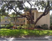 860 Virginia Street Unit 310, Dunedin image
