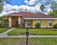 9201 Mill Circle, Tampa image