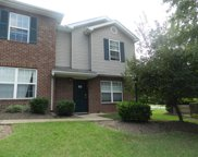 100 Waterview, Hendersonville image