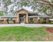 701 Dolphin Head Lane, Ormond Beach image