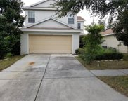 11420 Bay Gardens Loop, Riverview image