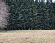 0 Orville Rd E, Orting image