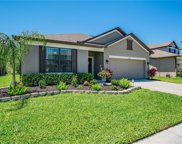 5475 Angelonia Terrace, Land O' Lakes image