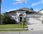10439 Peppergrass Court, Trinity image
