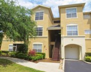 5125 Palm Springs Boulevard Unit 4201, Tampa image