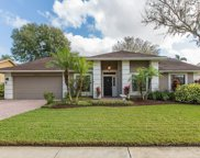 15710 Indian Queen Drive, Odessa image
