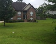 100 Cedar Crest Way, Odenville image