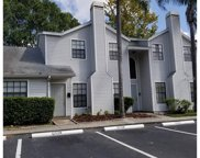 12529 Castle Hill Drive, Tampa image