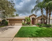 12307 Wycliff Place, Tampa image